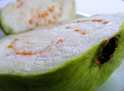 buah jambu biji bangkok